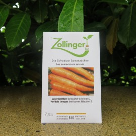 Semences bio sans ogm Carottes, variétés longues, Berlicumer