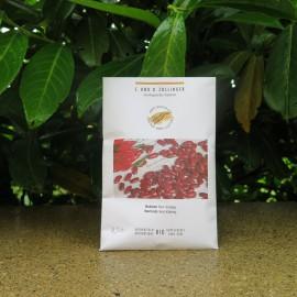Semences bio sans ogm haricots indien, red kidney