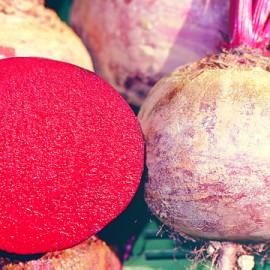 Semences bio sans ogm Betterave à salade boule rouge