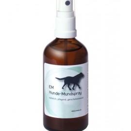 Spray buccal pour chiens EMVet